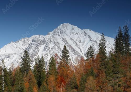 Keuken foto achterwand Nachtblauw peak snow mountains and forests