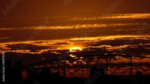 In de dag Oranje eclat 都会の昇る太陽3_03-1236