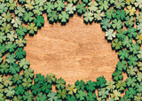Four-leaf clovers laying on wooden floor - 189211209