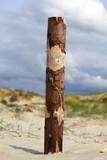 Dühne am Strand von St. Peter-Ording Nordsee
