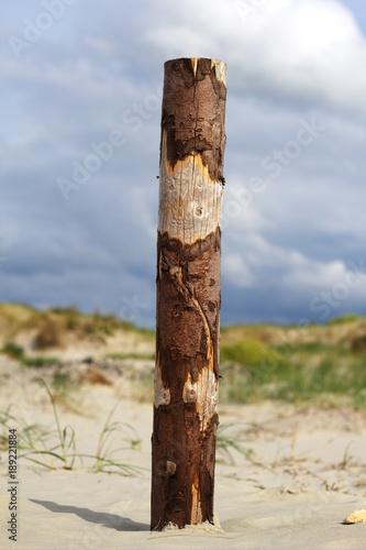 Fotobehang Noordzee Dühne am Strand von St. Peter-Ording Nordsee