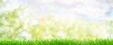 Frühlingshintergrund Wiese Bokh - 189243422