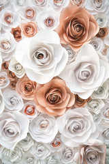 background paper roses