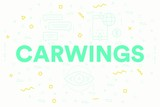 Conceptual business illustration with the words carwings
