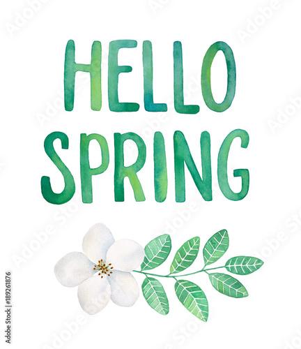 dekoracja-tekstowa-quot-witaj-wiosna-quot-zielone-litery-gradientowe-kwitnacy-kwiat-liscie-ziolowe-karta-zaproszenie-baner-plakat-szablon-recznie-rysowane-ilustracja-kolor-wody-na-bialym-tle-wyciac