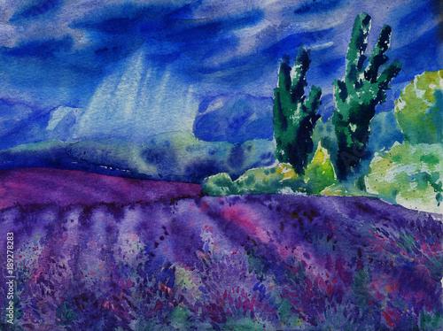 akwarela-malarstwo-z-pieknym-krajobrazem-typowe-pola-lawendy-w-deszczowy-dzien
