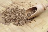 dry coriander seeds - 189358095