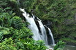 Waterfall in the forest on the island of Maui, Hawaii