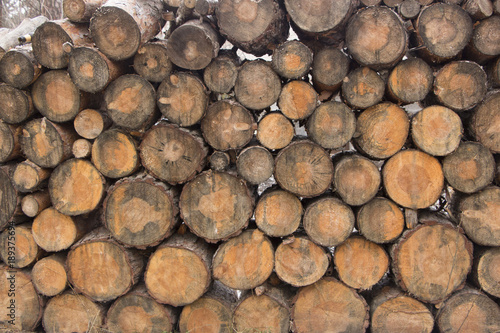 Foto op Plexiglas Brandhout textuur round timber texture background close up