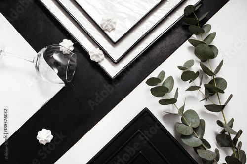 Black and white contrast. Geometric abstract background with green plant. Strict lines. Simple perfection concept