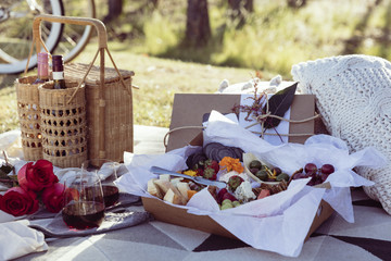 Romantic picnic set up with mixed food platter and wine