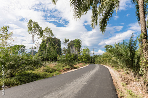Fotobehang Thailand Tropical nature with palms and karst rock