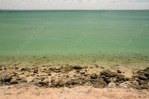 Fotobehang Olijf Water Background