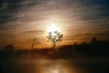 日の出 - 189544201
