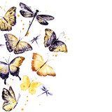 Watercolor flying butterflies, dragonfly. Hand drawn design - 189551061