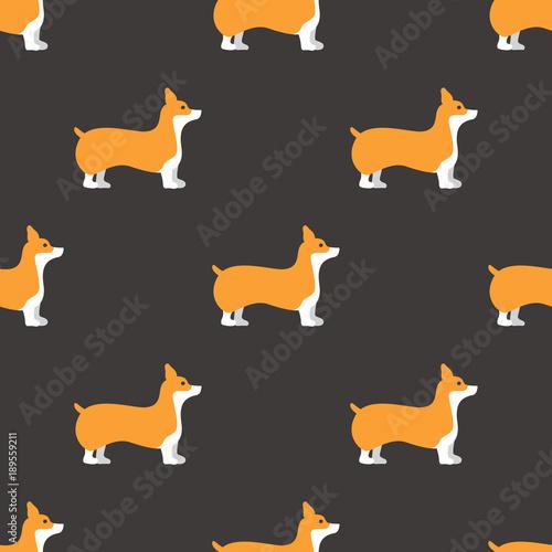 obraz PCV Welsh Corgi dog wallpaper.