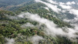 Rainforest. Rain forest mountains and clouds aerial landscape