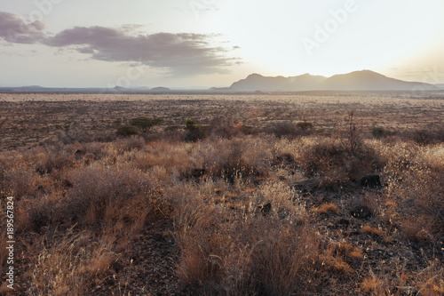 Keuken foto achterwand Cappuccino Landscape in Kenya