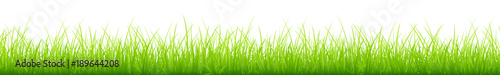 Meadow Banner Green - 189644208