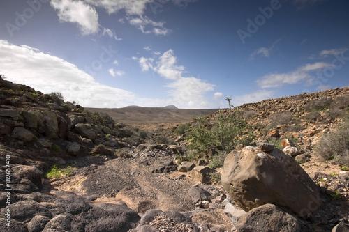 Aluminium Grijze traf. Fuerteventura Desert