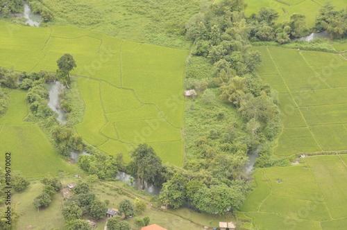In de dag Pistache Laos