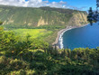 Hawaiian View