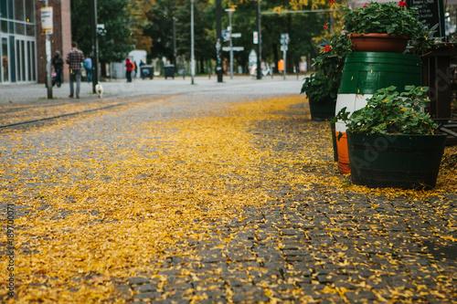 Foto op Plexiglas Herfst Autumn city scene. Street in Berlin. The yellow foliage lies on the sidewalk.