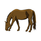 Hand drawn brown horse, vector