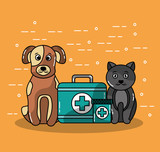 pet veterinary clinics and animal with cat and dog vector illustration