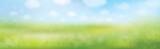 Vector summer nature  background, blurred effect. - 189820827