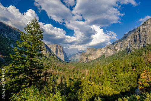 Fotobehang Landschappen Yosemite National Park Valley summer landscape