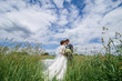 Beautiful bride and groom standing in grass and kissing. Wedding couple fashion shoot in field in the village among the picturesque nature