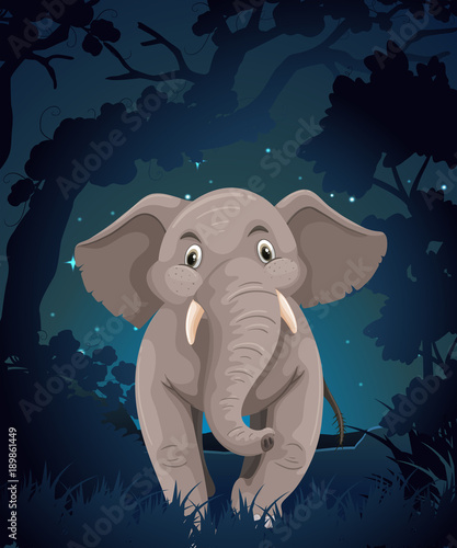 In de dag Nachtblauw Cute elephant in the forest at night