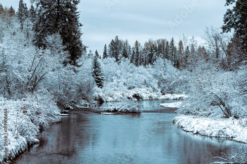 Foto op Canvas Herfst Fresh snow in late autumn on Whitefish River, Montana