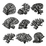 Set of silhouettes of sea corals black and white drawing