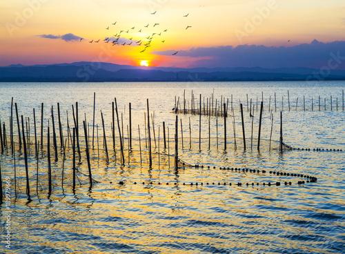 Fotobehang Beige redes de pesca en el mar