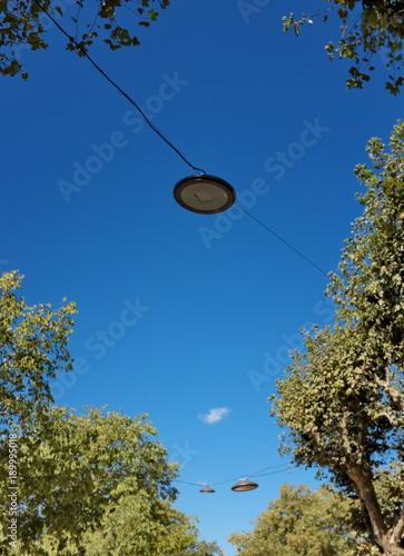Foto op Canvas UFO Lampes suspendues entre les arbres avec ciel bleu