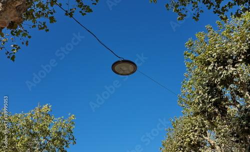 Fotobehang UFO Lampes suspendues entre les arbres avec ciel bleu
