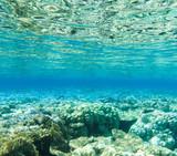 Tranquil underwater - 190007801