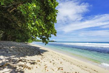 beautiful tropical beach anse barbarons 1