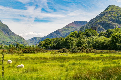 Foto op Canvas Pistache Snowdonia view from Llanberis over Derlwyn and Mount Snowdon, Gwynedd, Wales, UK