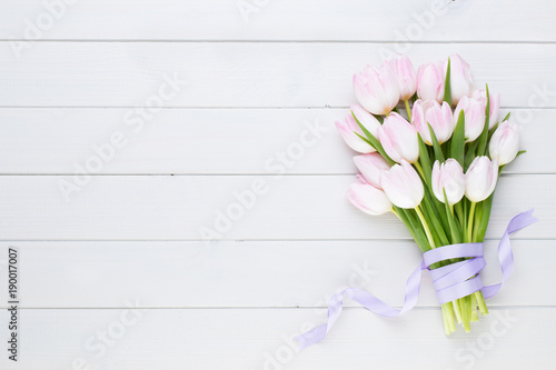 Foto Murales Pink tulip on the white background. Easter background.