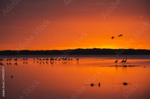 Aluminium Baksteen Myakka Sunset