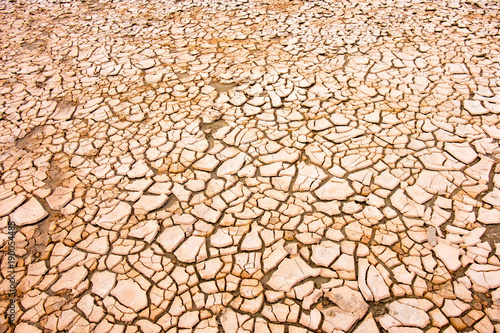 Dry soil in cracks. Concept of climate change