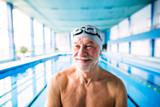 Senior man standing in an indoor swimming pool. - 190066417