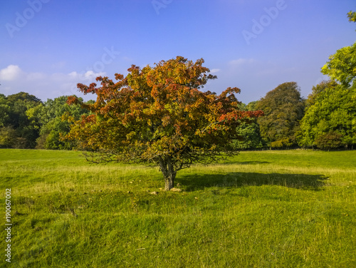 Fotobehang Landschappen broadway tower country park cotswolds worcestershire english midlands england uk