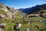 Paysage de montagne verte
