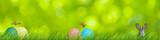 Ostern Frühling Osterhase Eier - 190106848