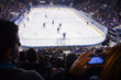 Hockey fans on stadium