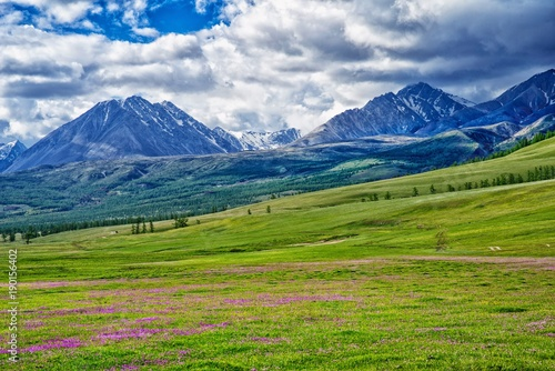 güzel tepeler